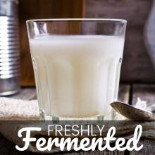 Certified Organic Buttermilk Yoghurt Starter Culture