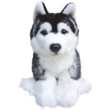 "Siberain Husky soft and cuddly 12"" toy dog"