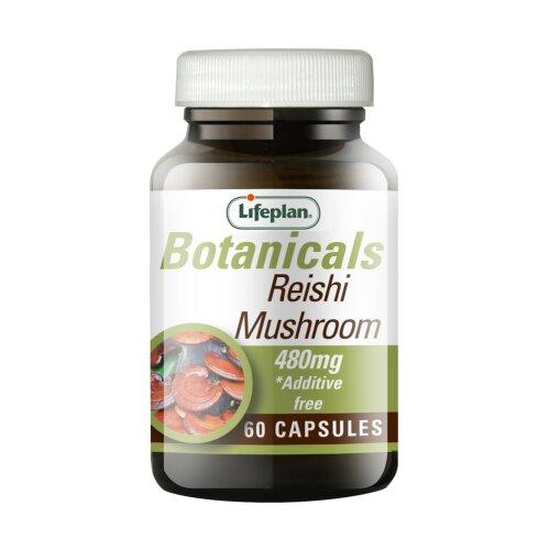 Lifeplan Reishi Mushroom 480mg 60 Capsules