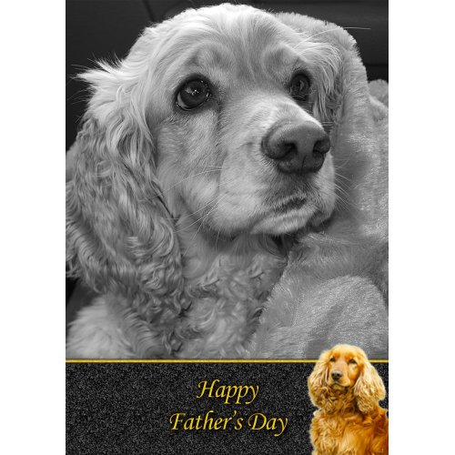 """Cocker Spaniel Father's Day Greeting Card 8""""x5.5"""""""