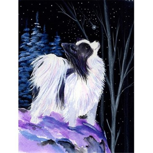 Starry Night Papillon Canvas Flag - House Size, 28 x 40 in.
