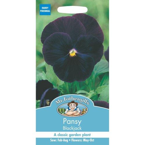 Mr Fothergills - Pictorial Packet - Flower - Pansy Blackjack - 75 Seeds