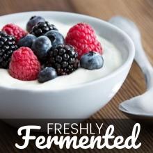 Certified Organic Langfil Yoghurt Starter Culture