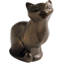 Gallery Collection - Cat Sitting