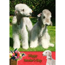 """Bedlington Terrier Mother's Day Greeting Card 8""""x5.5"""""""