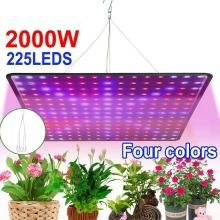 2000W LED Grow Light Hydroponic Full Spectrum Indoor Veg Plant Lamp
