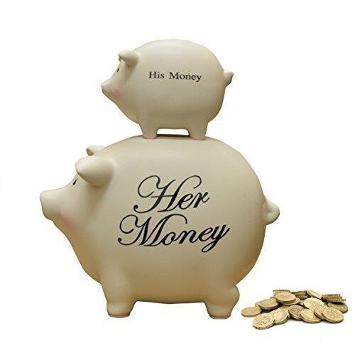 Funny His Money and Her Money Piggy Bank Money Box Coins Couples Gift