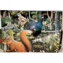 Animal Printed Cardboard Folder