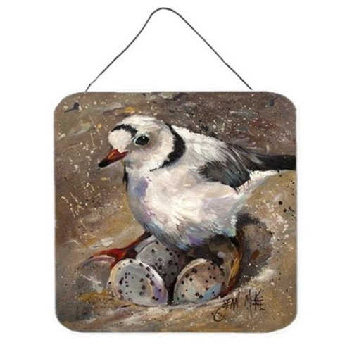 Piping Plover Wall and Door Hanging Prints