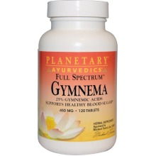 Planetary Herbals, Ayurvedics, Gymnema, 450 mg, 120 Tablets