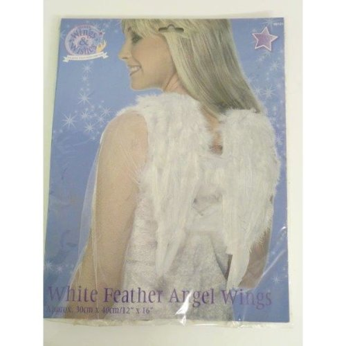 Black Feather Wings Dark Angel Size 30cm x 40cm Adults Fancy Dress Accessory