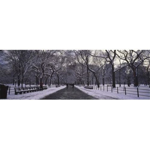 Bare trees in a park  Central Park  New York City  New York State  USA Poster Print by  - 36 x 12
