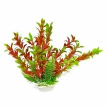 Aquatop AK01241 16 in. Hygros-Like Weighted Plant, Green & Red