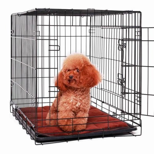 Double Door Dog Travel Crate with Cushion