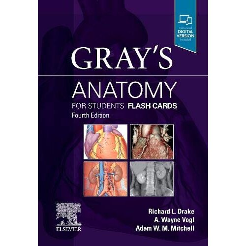 Grays Anatomy for Students Flash Cards by Drake & Richard & PhD & FAAA & Dr.Vogl & A. WayneMitchell