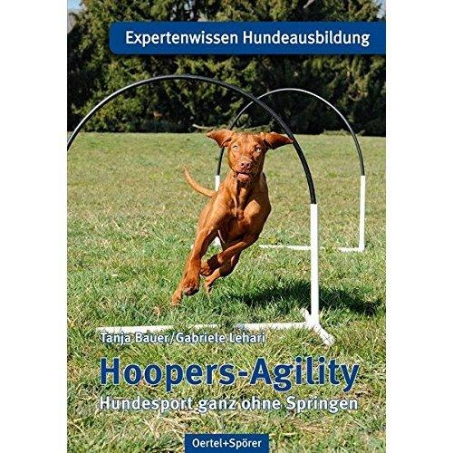 Hoopers-Agility: Hundesport ganz ohne Springen