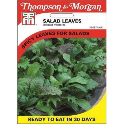 Thompson & Morgan - Vegetables - Salad Leaves - Oriental Mustards - 2000 Seed