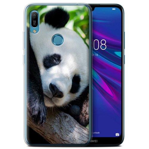 (Panda Bear) Wildlife Animals Huawei Y6 2019 w/FP Scanner Phone Case Transparent Clear Ultra Soft Flexi Silicone Gel/TPU Bumper Cover