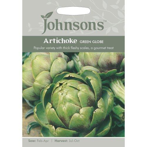 Johnsons Seeds - Pictorial Pack - Vegetable - Artichoke Green Globe - 50 Seeds