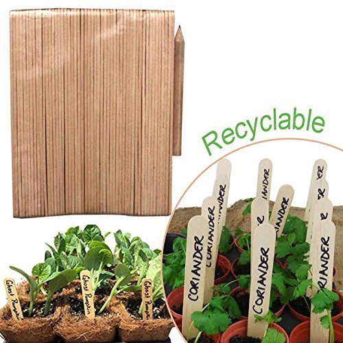 50 Recyclable Environment Friendly Bamboo Wood Seed Labels Sticks With Pencil