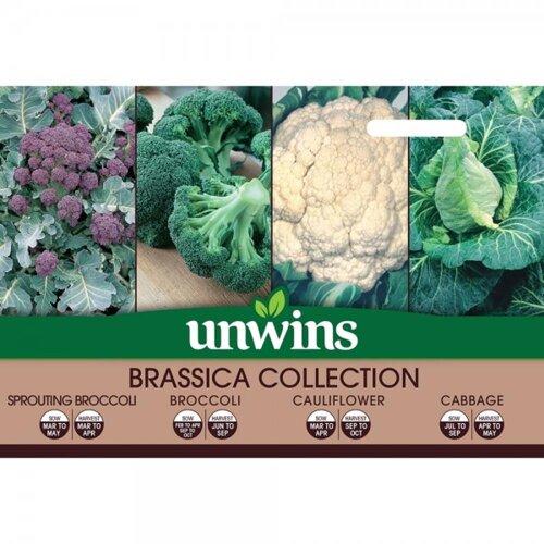 Unwins Brassica Collection Broccoli Cauliflower Cabbage Veg Seeds