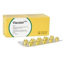 Viacutan Plus - Capsules - 40 X 550mg
