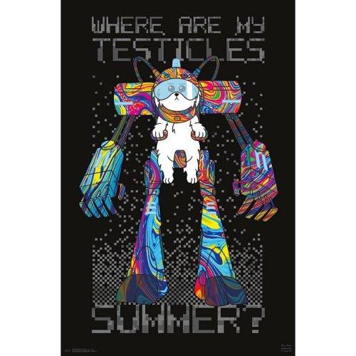 "Poster - Studio B - Rick & Morty - Testicles 23""x35"" Wall Art p6423"