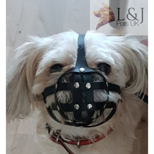 Leather Muzzle For Small Dogs