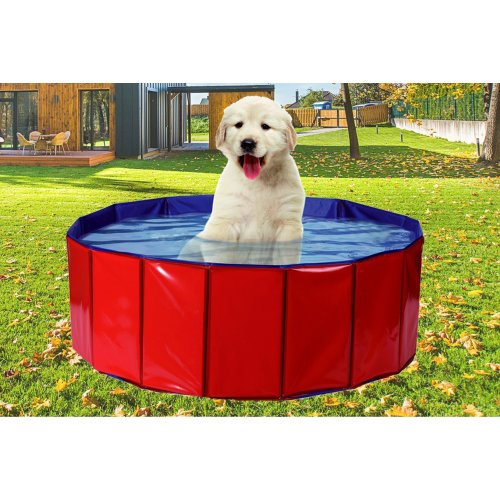 (Medium (80 x 20 cm)) Pet Pool Playpen PVC Water Foldable Puppy Size M/L