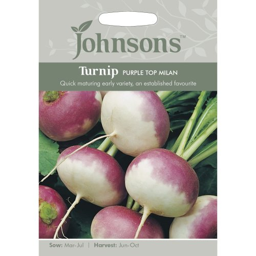Johnsons Seeds - Pictorial Pack - Vegetable - Turnip Purple Top Milan - 1750 Seeds