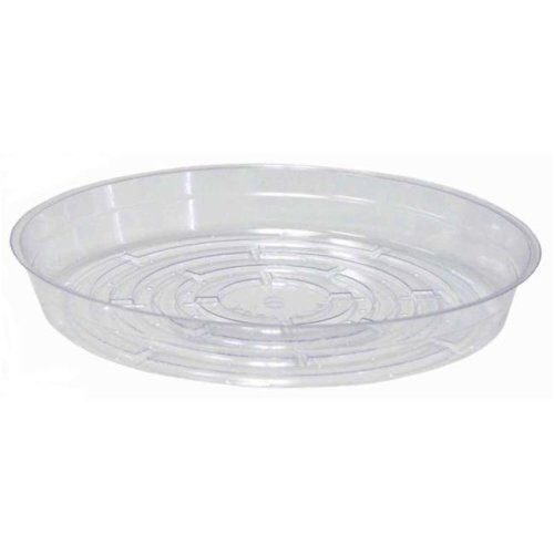 "Gardener/'S Blue Ribbon Saucer 8 /"" Diameter Resin Clear Pack of 50"