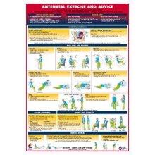 Antenatal Advice Poster