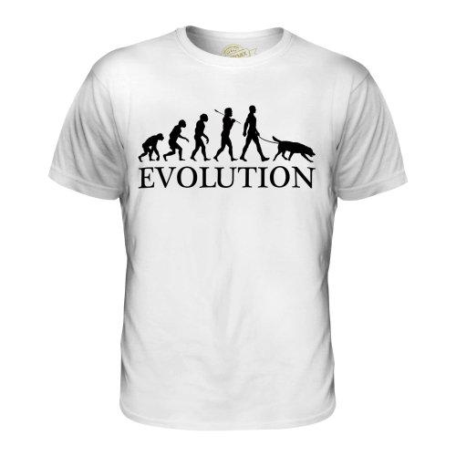 Candymix - Flat-Coated Retriever Evolution - Men's T-Shirt Top