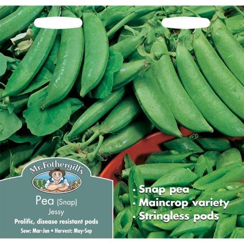 Mr Fothergills - Pictorial Packet - Vegetable - Snap Pea Jessy - 150 Seeds