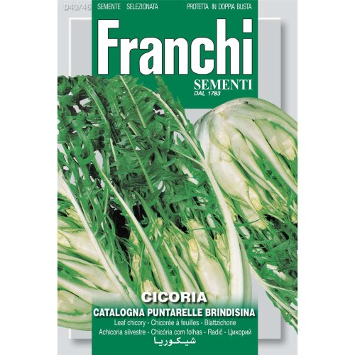 Franchi Seeds of Italy - DBO 40/46 - Chicory - Catalogna Brindisina - Seeds