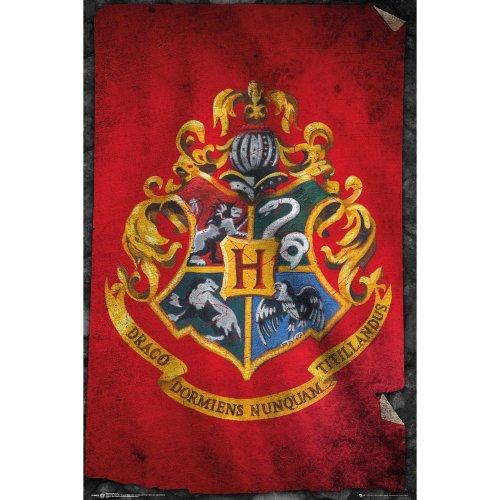Harry Potter Hogwarts Flag Maxi Poster