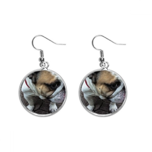 Bulldog Pet Animal Photography Pictures Ear Dangle Silver Drop Earring Jewelry Woman