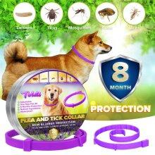 Dog Flea,Tick, Lice & Larvae Collar 8 Months Protection Waterproof Adjustable