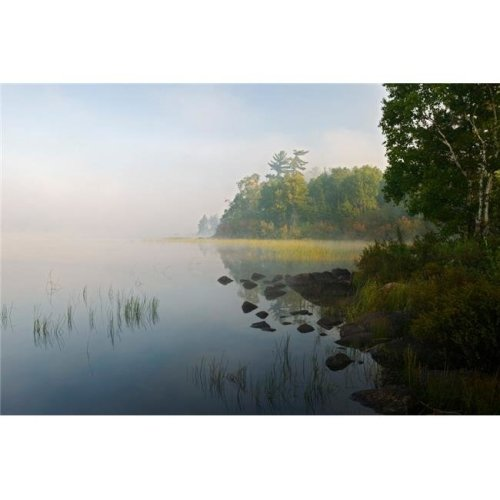 Shoreline Trees & Grasses Along Nina Moose Lake Fog Boundary Waters Canoe Area Wilderness Minnesota USA Poster Print, 36 x 12