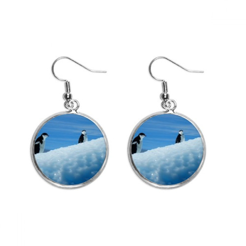 Two Antarctic Penguins Science Nature Picture Ear Dangle Silver Drop Earring Jewelry Woman