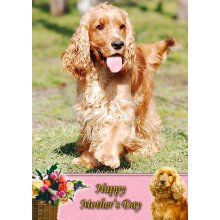 """Cocker Spaniel Mother's Day Greeting Card 8""""x5.5"""""""