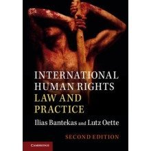 International Human Rights Law and Practice - Used