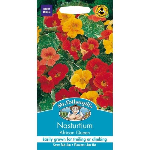 Mr Fothergills - Pictorial Packet - Flower - Nasturtium African Queen - 25 Seeds