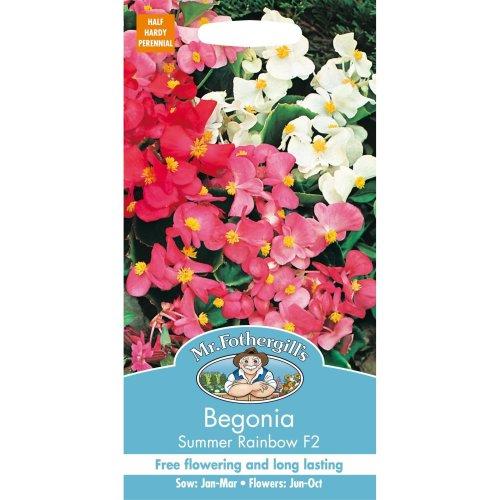 Mr Fothergills - Pictorial Packet - Flower - Begonia Summer Rainbow F2 - 2000 Seeds