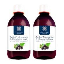 Healthspan Optiflex Glucosamine & Chondroitin Liquid | Blackcurrant Flavour | 2 x 300ml