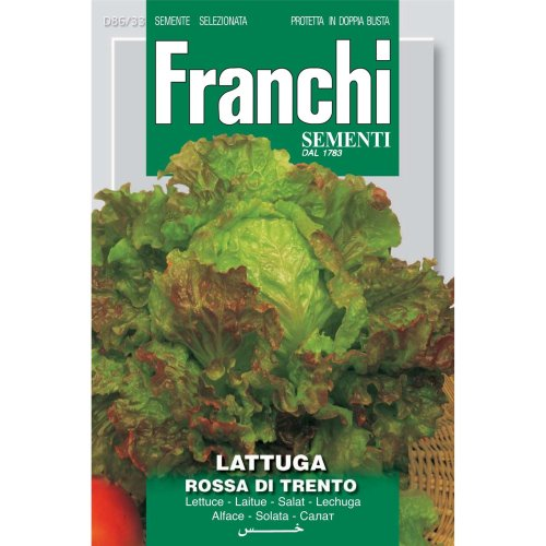 Franchi Seeds of Italy - DBO 86/33 - Lettuce - Rossa Di Trento - Seeds