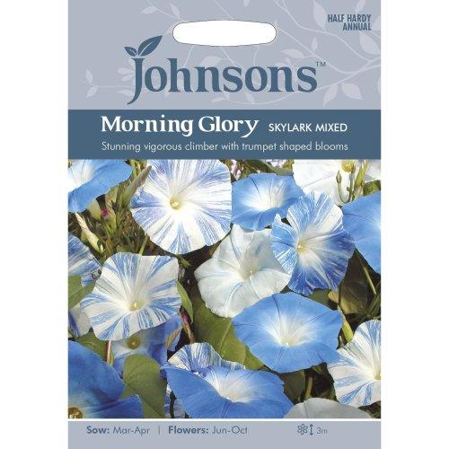 Johnsons Seeds - Pictorial Pack - Flower - Morning Glory Skylark Mixed - 30 Seeds