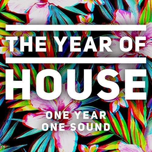Various Artists - the Year of House [CD]