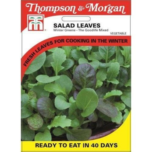 Thompson & Morgan - Vegetables - Salad Leaves - Winter Greens The Good Life Mixed - 150 Seed
