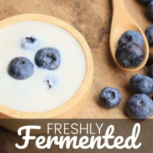 Certified Organic Amasi Yoghurt Starter Culture